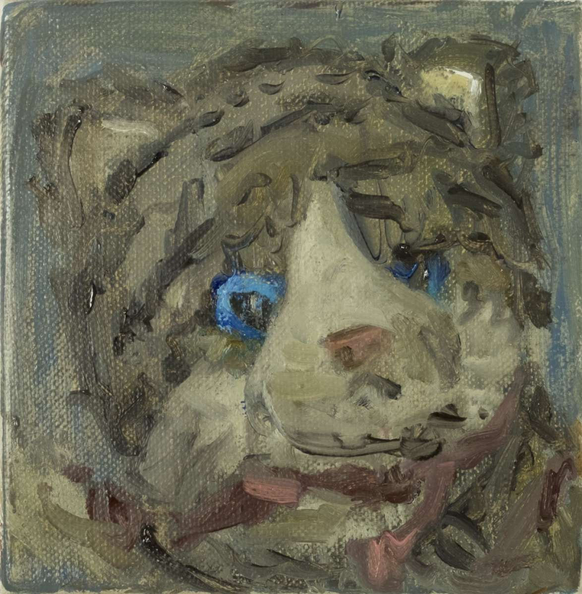 103 Katze Stefan Aufder Maur