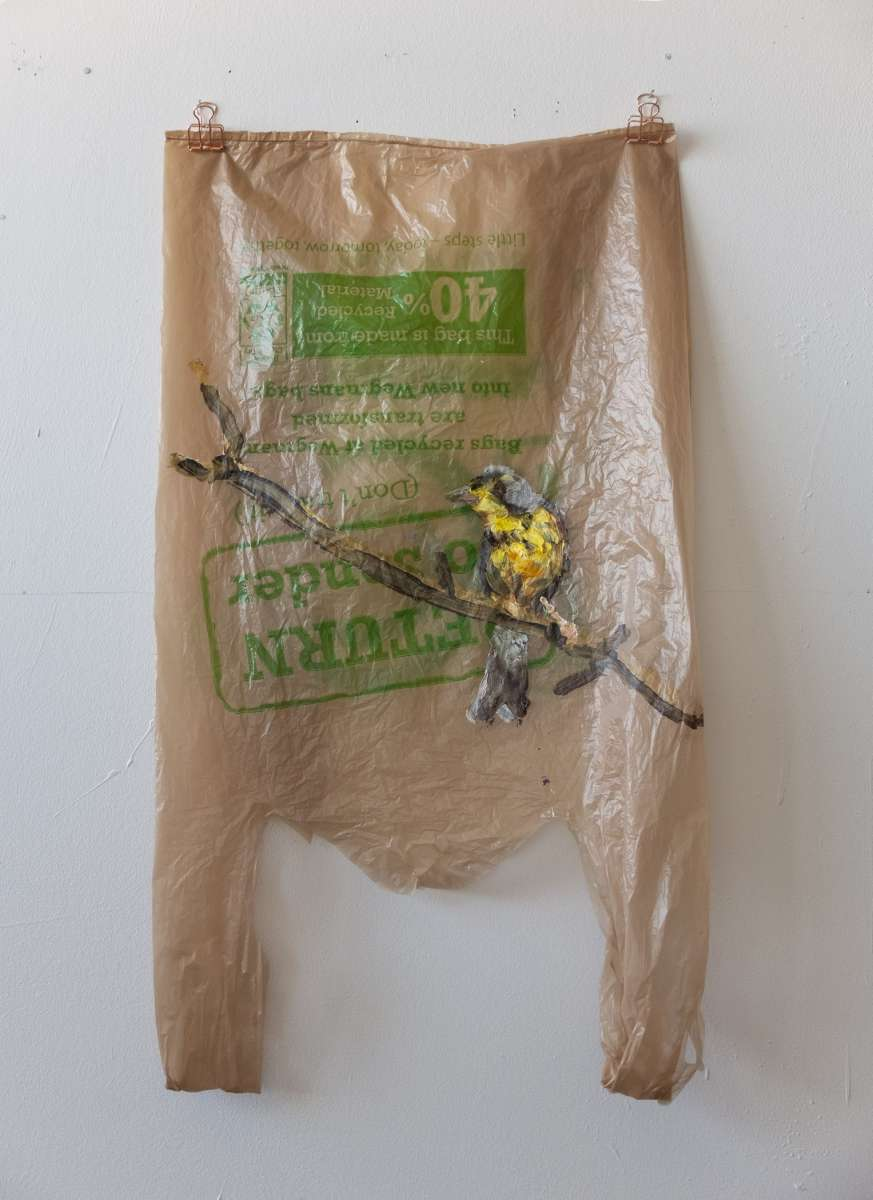 11 Plastic Bird Braun Canada Warbler Painting Sad M