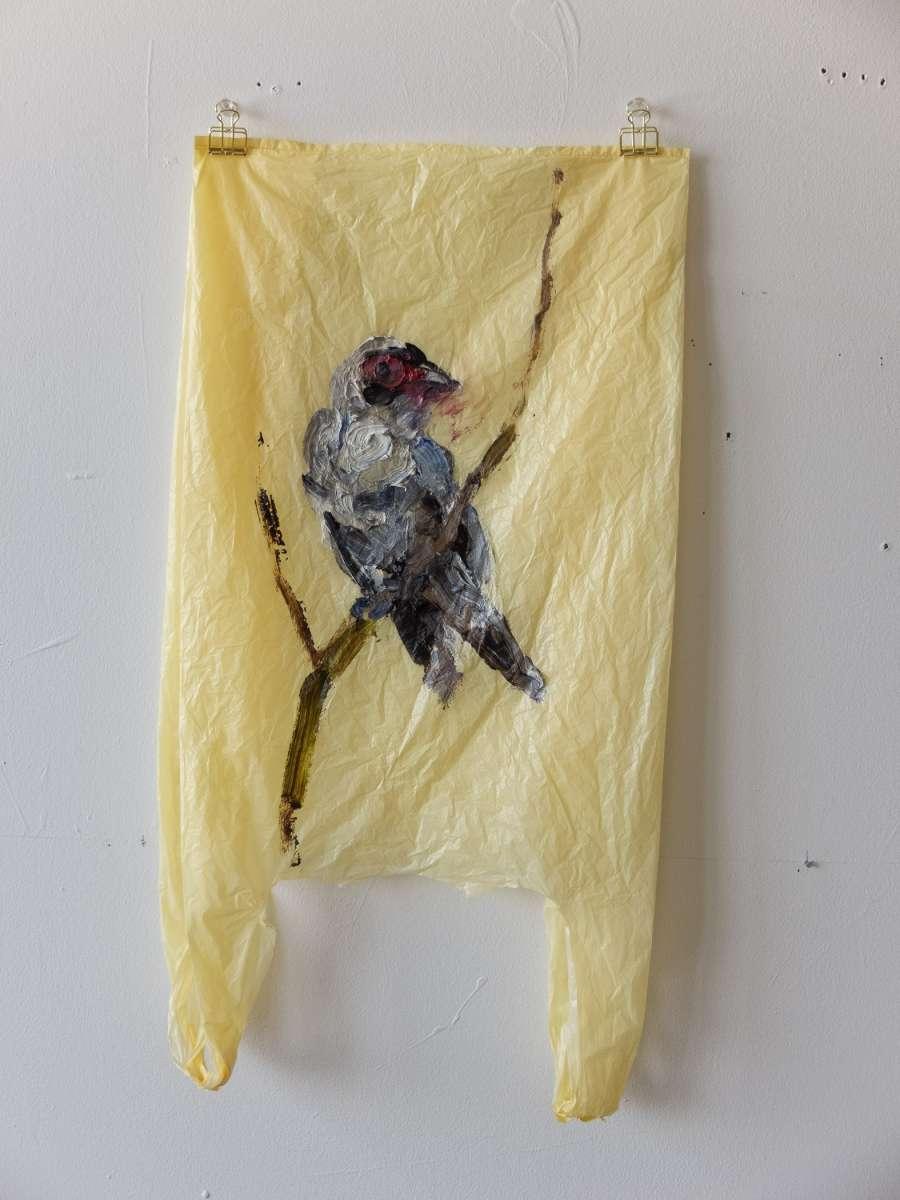 16 Plastic Bird Yellow Tityra Painting Sad M