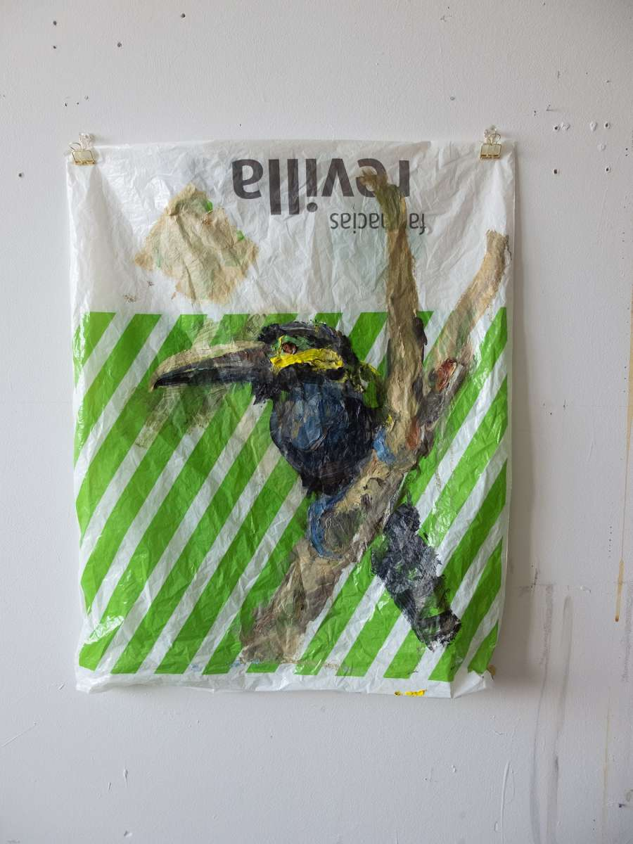 17 Plastic Bird Apotheke Yellow Eared Toucanet Painting Sad M