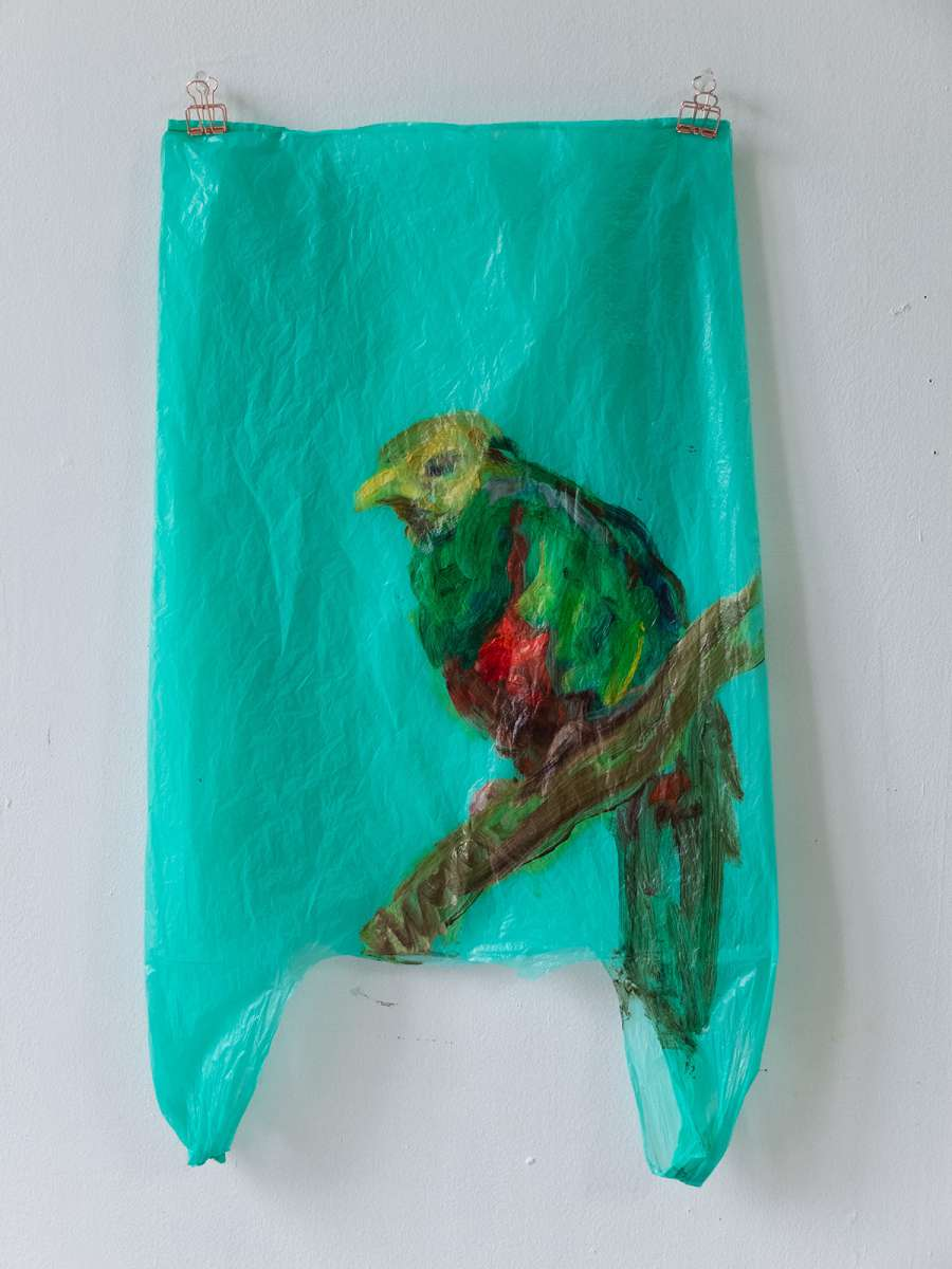 27 Quetzal Painting Stefan Ad M