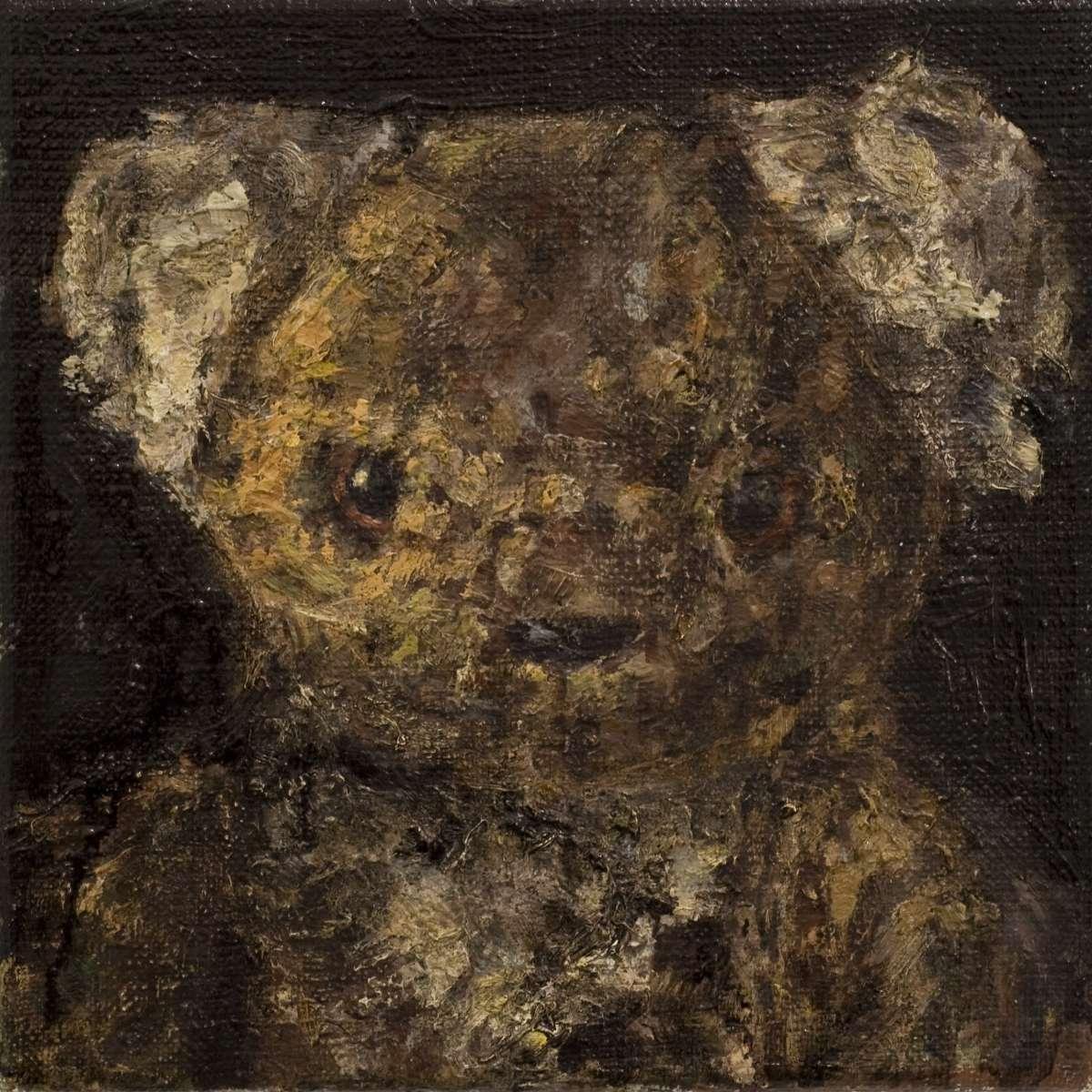 41 Koala 1561
