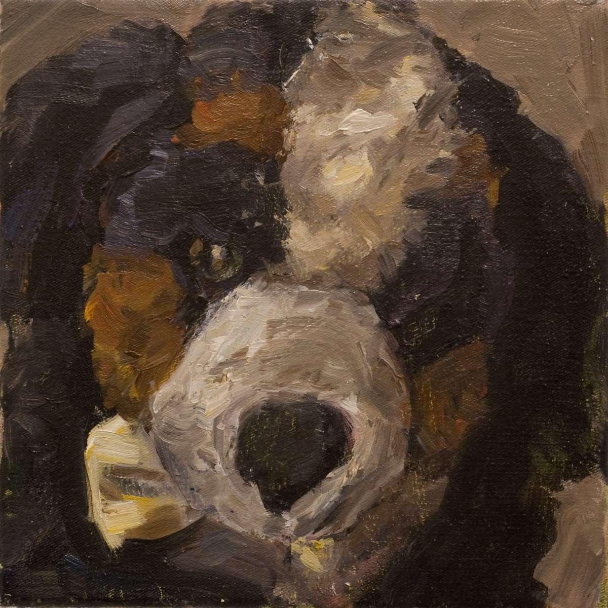 43 Hund 1563 01