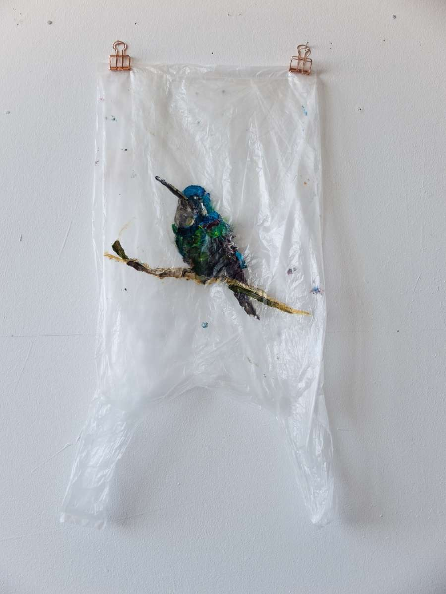 8 Plastic Bird Transp Kolibri Painting Sad M